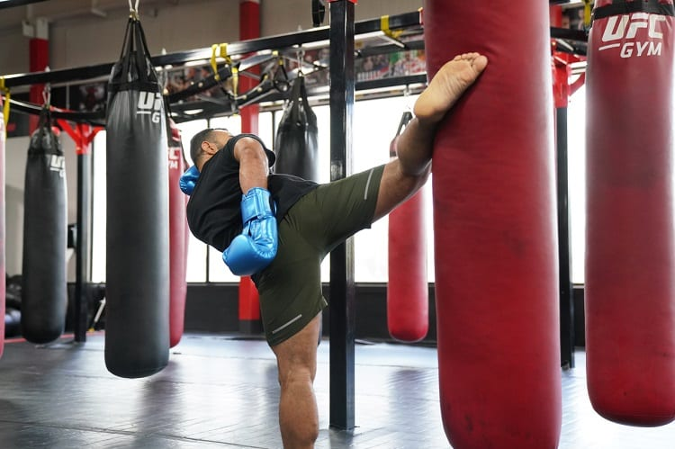 WHAT TO LOOK FOR IN AN MMA PUNCHING BAG?