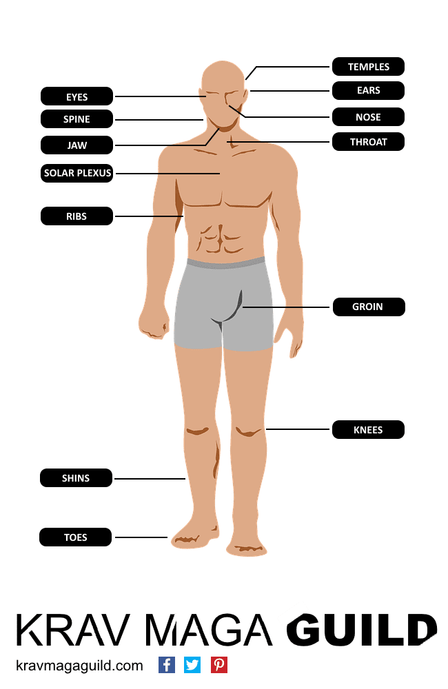 weak spots to attack the body