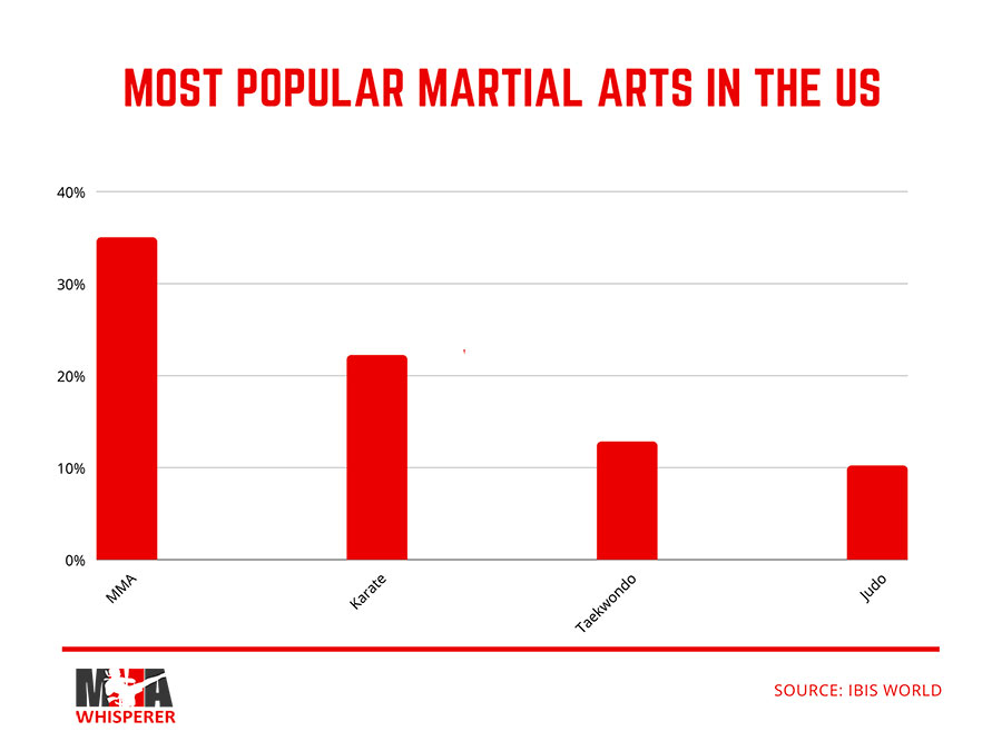 Top Martial Arts In The USA