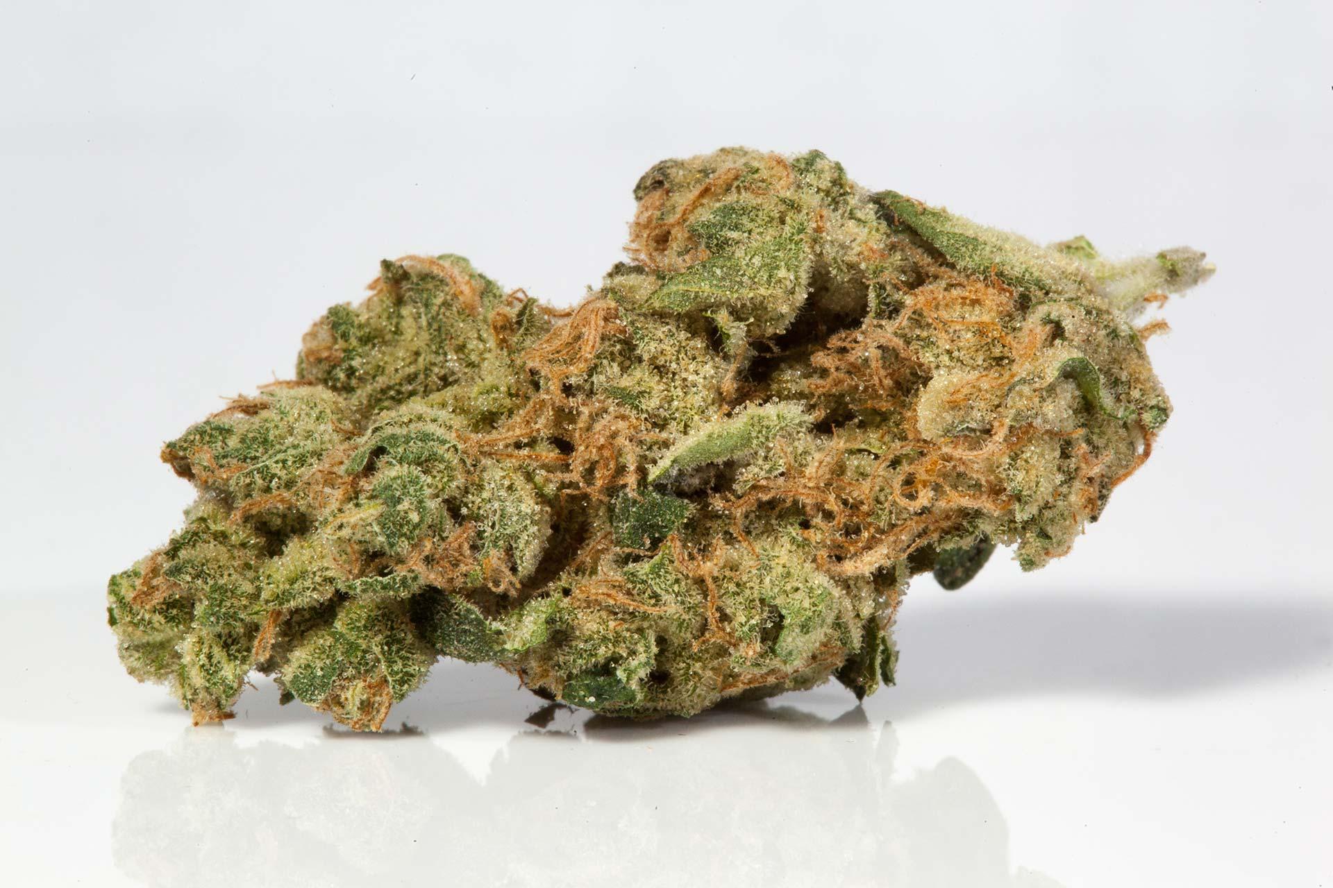Sour Diesel Cannabis Strain For BJJ