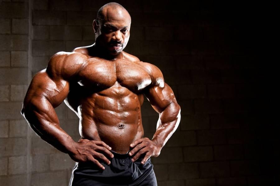 Bodybuilding and martial arts